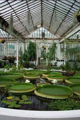 The National Botanic Gardens